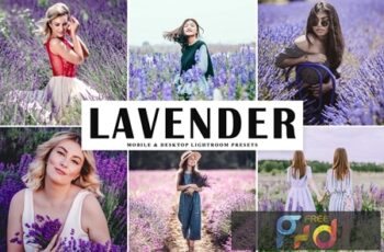 Lavender Mobile & Desktop Lightroom Presets KAABXQD 2