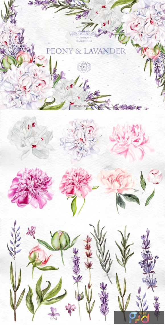 Watercolor Peony & Lavender 1996883 1