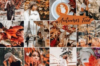 Mobile Lightroom Presets AUTUMN FEED 4116991