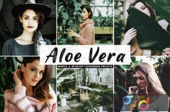 Aloe Vera Mobile & Desktop Lightroom Presets MR8WQHN 5