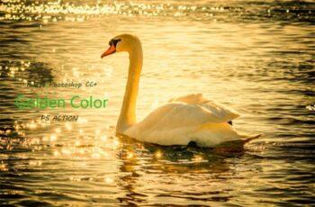 Golden Color Effect Ps Action 2013325 8