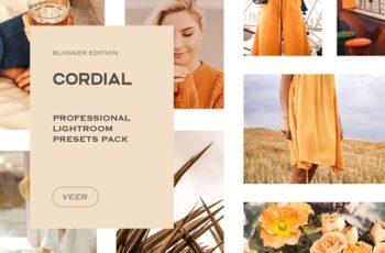 Cordial Lightroom Presets Mobile 4241906 8
