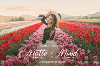 Matte Mood Presets for Lightroom 4290975 12