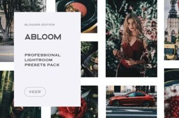 Abloom Lightroom Mobile Presets 4241908 5