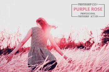 Purple Rose - Photoshop Action 4194427 6