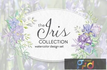 The Iris Collection Watercolor Clip Art Bundle E978FBA