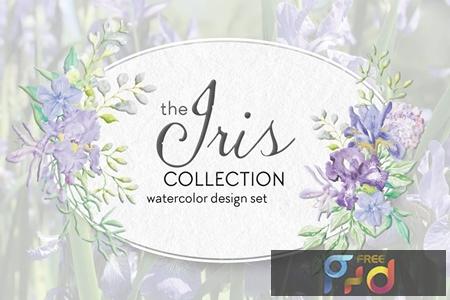 The Iris Collection Watercolor Clip Art Bundle E978FBA 1