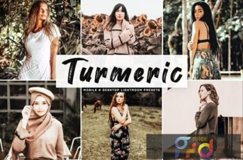 Turmeric Mobile & Desktop Lightroom Presets APTWWBU 7