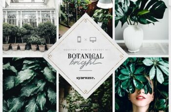 10 Botanical Lightroom Presets 3610687 3