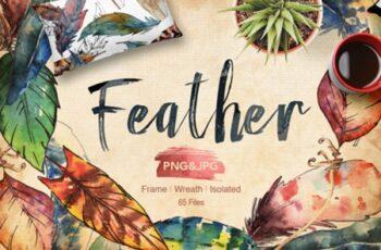 Feather Bird 2007513 3