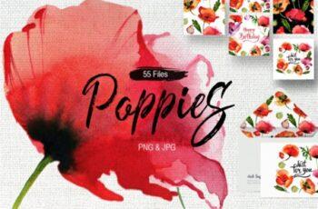 Poppy Flowers 2007511 6