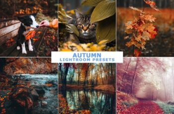 Autumn Lightroom Presets 4162313 7