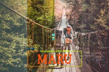 Maru LR Presets for Mobile + Desktop 4171069 4