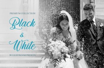 Black & White Presets for Lightroom 4286866 5