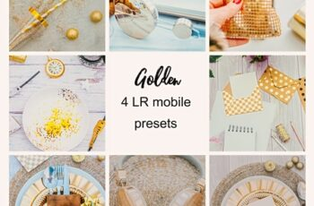 GOLDEN MOBILE TRAVEL PRESET 4364806 7