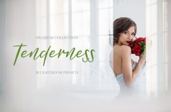 Tenderness Presets for Lightroom 4286646 2