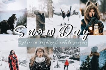 Vibrant SNOW DAY Lightroom Presets 4331998 5