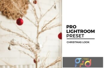 Christmas Look Lightroom Preset 4395308 5
