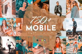 700+ Lightroom Mobile Presets Pack 4261743 2