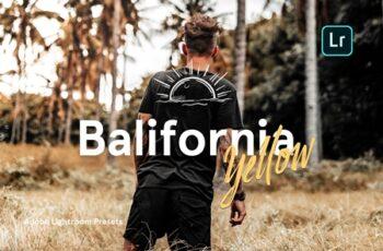 Balifornia Presets - Yellow 4338145 11