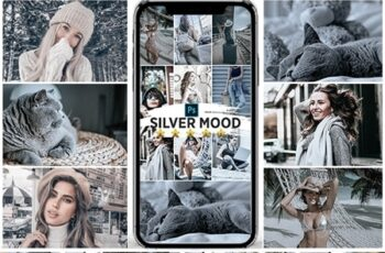 Silver Mood Photoshop Actions 25147155 11