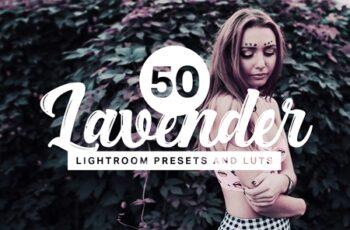 50 Lavender Lightroom Presets and LUTs 4405274