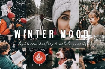 Moody WINTER MOOD Lightroom Presets 4284060 10