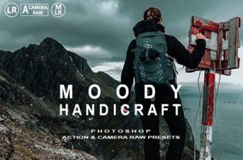 Moody Handicraft Photoshop Action 25146859 8