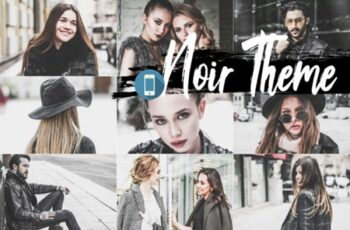 05 Noir Theme Mobile Lightroom Presets 2362239 6