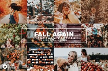 66 Fall Again 4355070 5