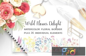 Wildflower Delight Border Plus Elements 3VFPMXB 5