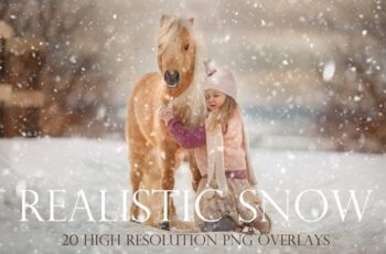 Realistic snow overlays 4405059 7