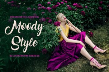 Moody Style Presets for Lightroom 4291241 5