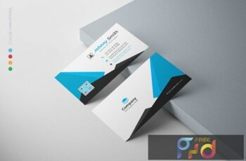 Business Card PAKB3WT 9