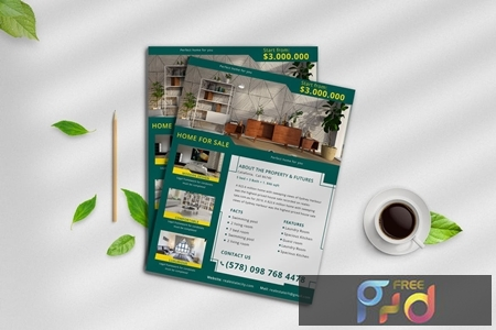Real Estate Flyer 8 CDW4NZV 1