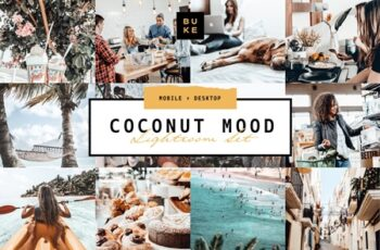 5 Coconut Lightroom Presets Pack 3862010 6