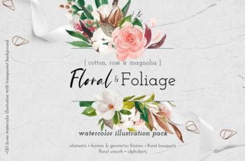 Floral & Foliage Illustration Pack 4452095 6