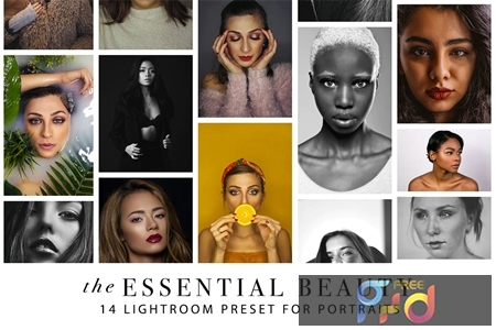 Lightroom Presets for Portraits EXB8JHK 1