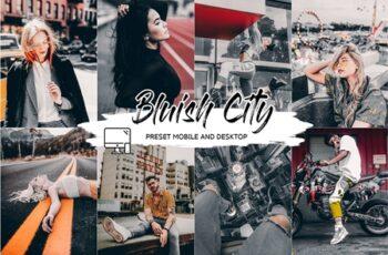 BLUISH CITY LIGHTROOM PRESET + LUT 4437576 6