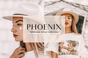 Phoenix Lightroom Presets 4437457 6