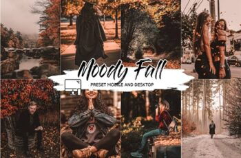 MOODY FALL LIGHTROOM PRESETS 4493759 7
