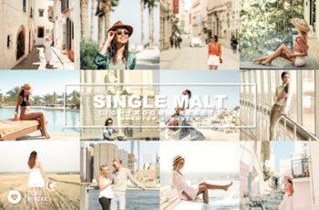 70 Single Malt Presets 4489496 2