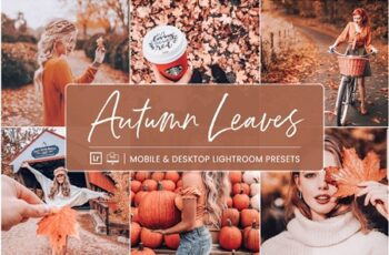 Lightroom Presets Autumn Leaves 4412823 5