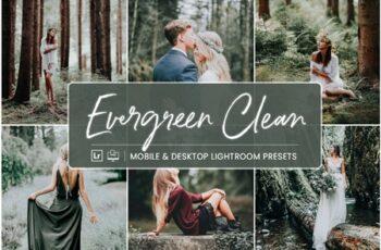 Lightroom Presets Evergreen Clean 4412831 10