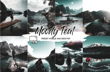 MOODY TEAL LIGHTROOM PRESETS 4505451 6