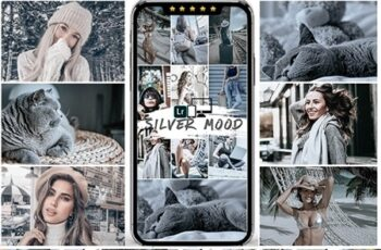 Silver Mood Lightroom Presets 25048351 5