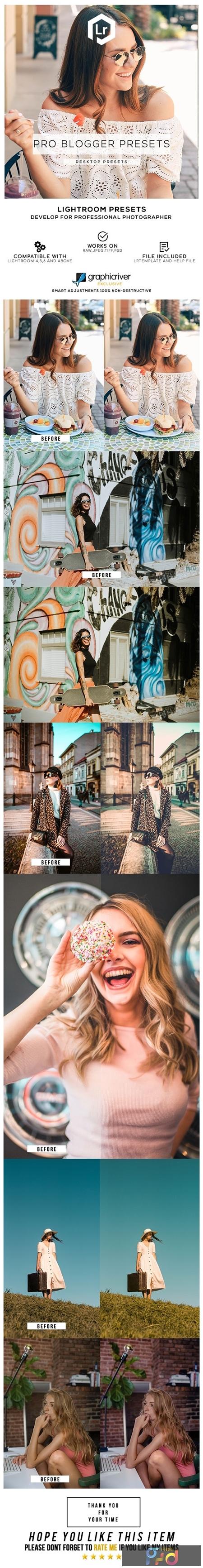 24 Pro Blogger Presets 25591496 1