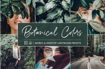 Lightroom Presets Botanical Colors 4410278 6