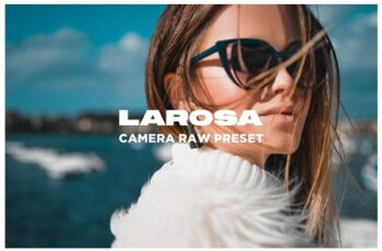 Larosa - Camera Raw Preset 4483323