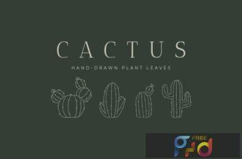 Cactus Hand-Drawn Plant UW7H9U7 3